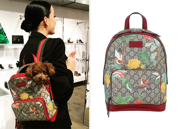 Gucci Blooms GG Supreme Backpack as seen on Katy Perry Instagram