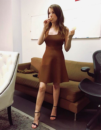 A.L.C. Rust Brown Ali Dress as seen on Anna Kendrick Instagram.
